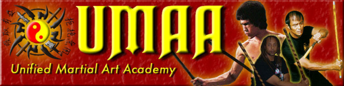 Unified Martial Art Academy Logo